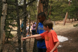 Highlands Camp discoveries during the Outdoor Classroom